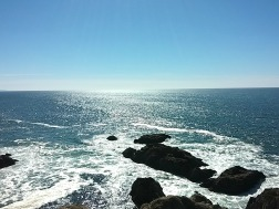 view West from Bodega Head