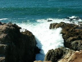 waves at Bodega Head