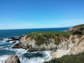 View North from Bodega Head