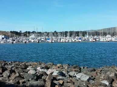 Spud Point Marina, Bodega Bay