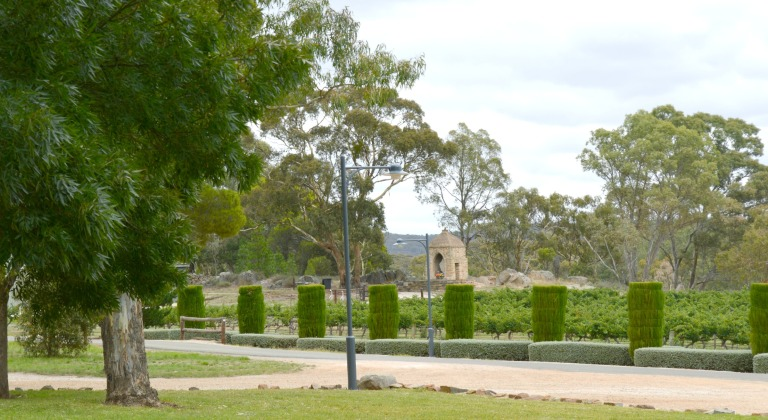 Cemetary and Vineyards at Sevenhill