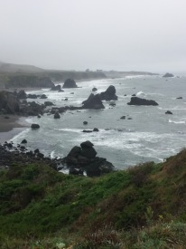 Fog bank at Shell Beach in Bodega Bay