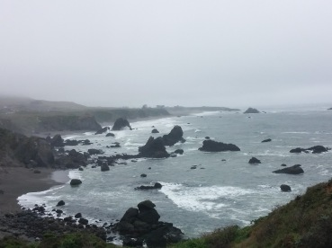Shell Beach at Bodega Bay