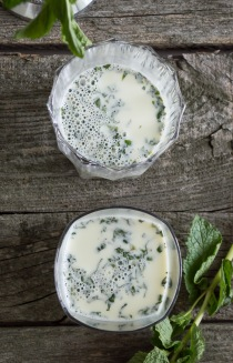 Mint Julep Panna Cotta with Bourbon Sugar Cookies | whiskandmuddler