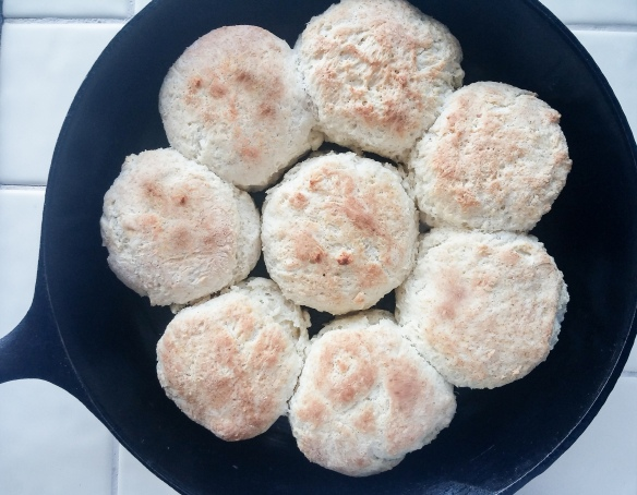 flaky powder milk biscuits in pan | whiskandmuddler.com