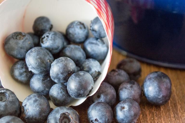 blueberries | whiskandmuddler.com