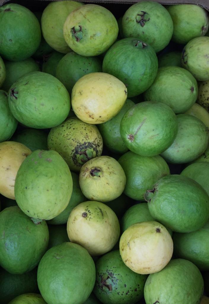 guava | kona farmer's market | whiskandmuddler.com