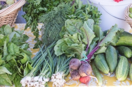 produce from coyote family farm at SRCFM | whiskandmuddler.com