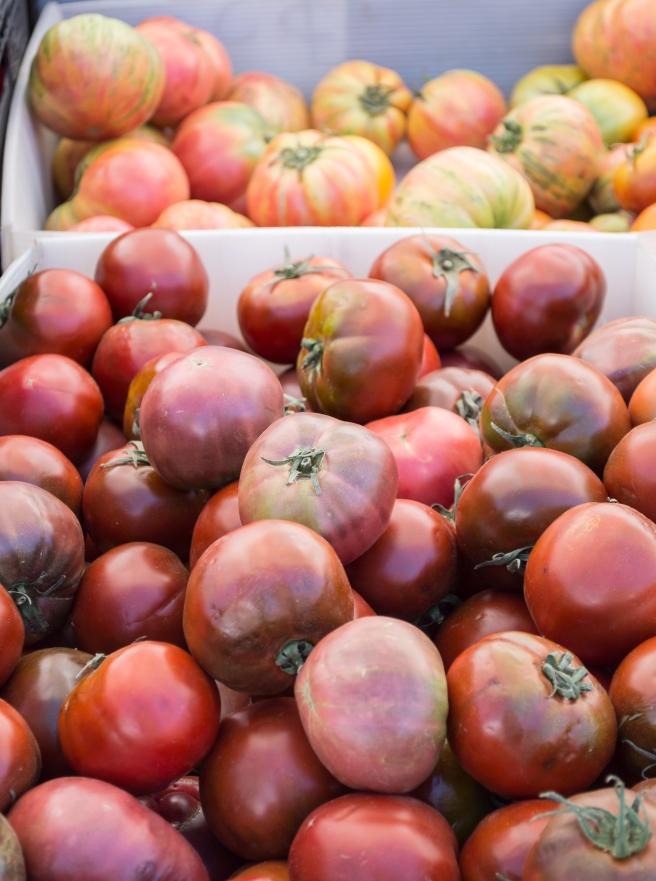 tomatoes at SRCM | whiskandmuddler.com