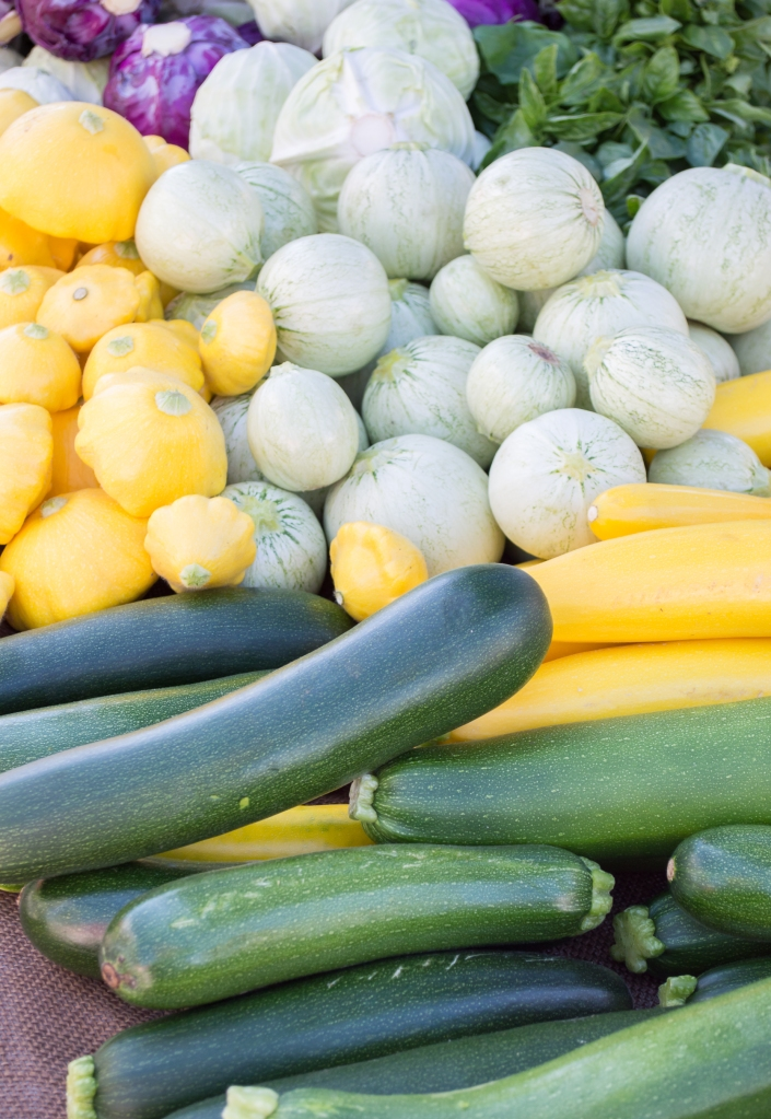 cabbages and zucchini at santa rosa community farmer's market | whiskandmuddler.com