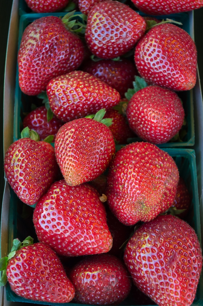 strawberries | santa rosa community farmer's market | whiskandmuddler.com