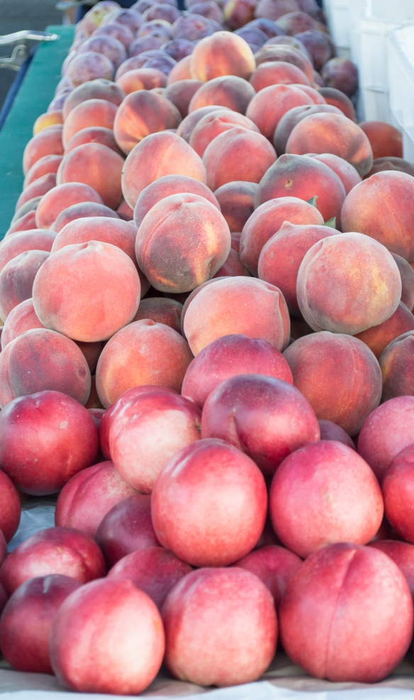 peaches and nectarines | santa rosa community farmer's market | whiskandmuddler.com