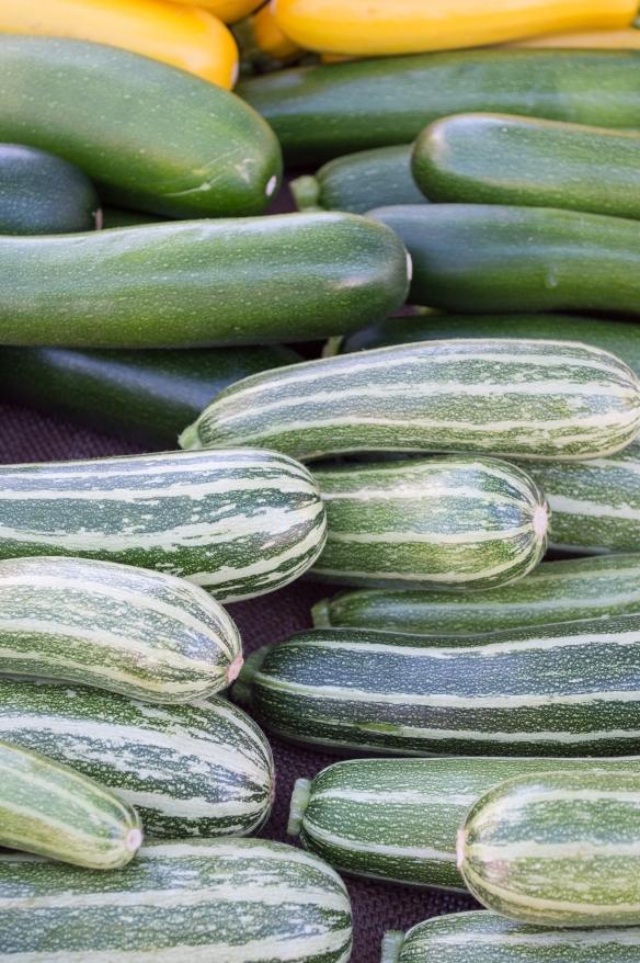 summer squash & zucchini | SRCFM | whiskandmuddler.com
