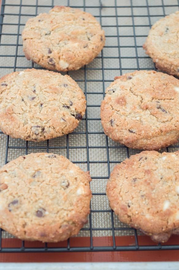 Classic Chocolate Chip Cookies (GF) | whiskandmuddler.com