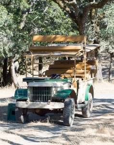 jeep safari west | whiskandmuddler.com