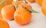 mandarin | whiskandmuddler.com